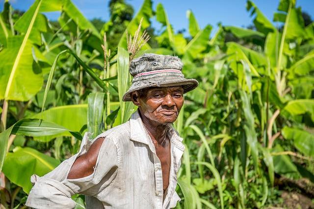 Farmer standing by his land  Faces of Haïti - IFAD HAÏTI